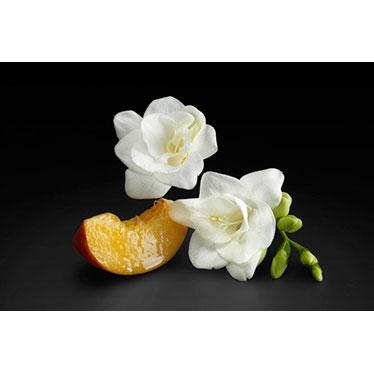 Parfümerie Pieper online - BOSS The Scent für her entdecken