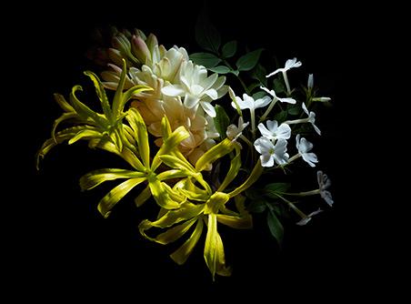 Alexander McQueen  Flower